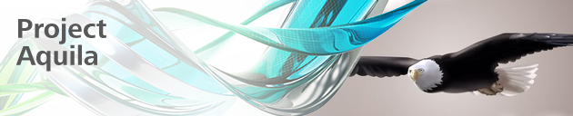 Aquila_banner_2013_layers
