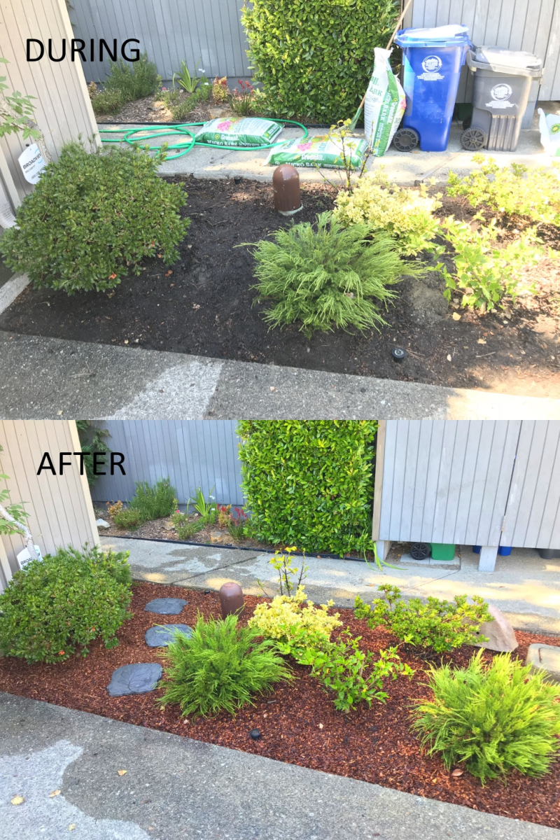 Before_after_04